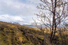 Herbst am Skaftafell