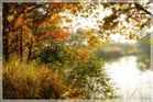 Herbst am Steinrodsee