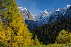 Herbst am Stilfser Joch