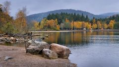Herbst am Titisee (2)