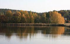 Herbst am Vogelschutzteich