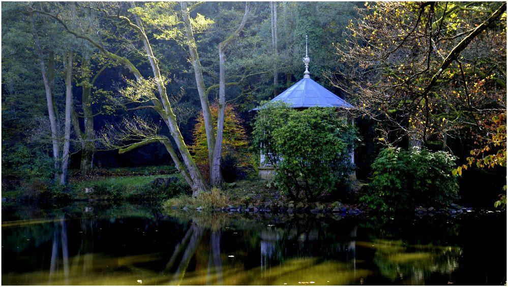 Herbst am Waldsee III