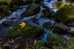 Herbst am Wasserfall in Menzenschwand