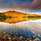 Herbst am Weinfelder Maar