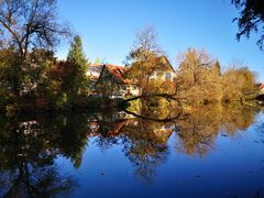 Herbst an der Argen