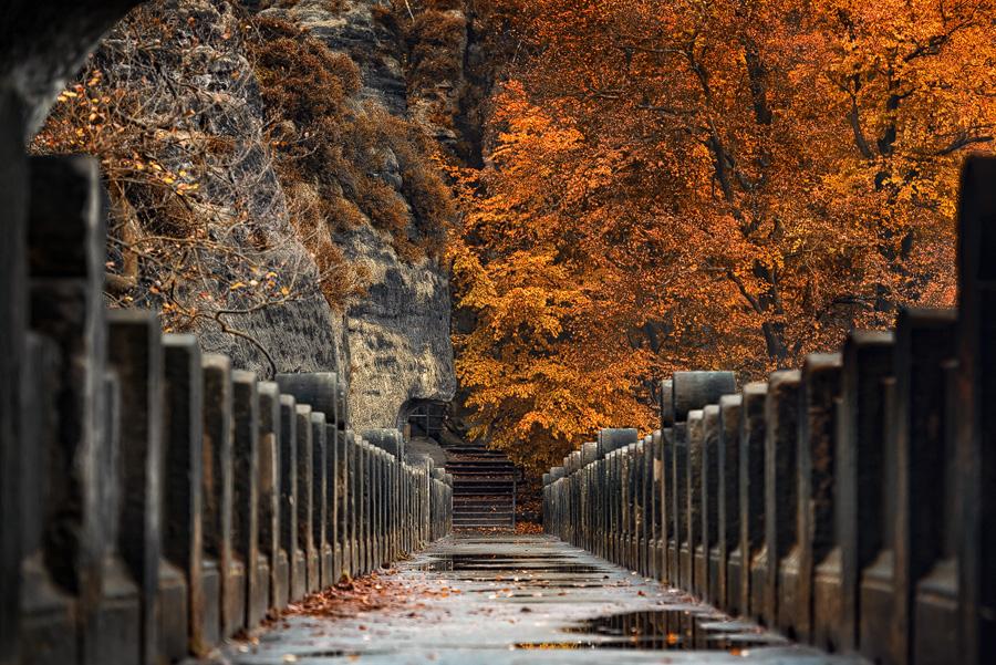 Herbst an der Bastei