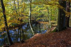 Herbst an der Bille