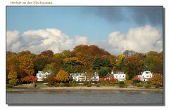 Herbst an der Elbe!