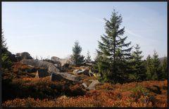 ...Herbst an der GrenzKlippe...