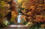 Herbst an der Steilstrecke