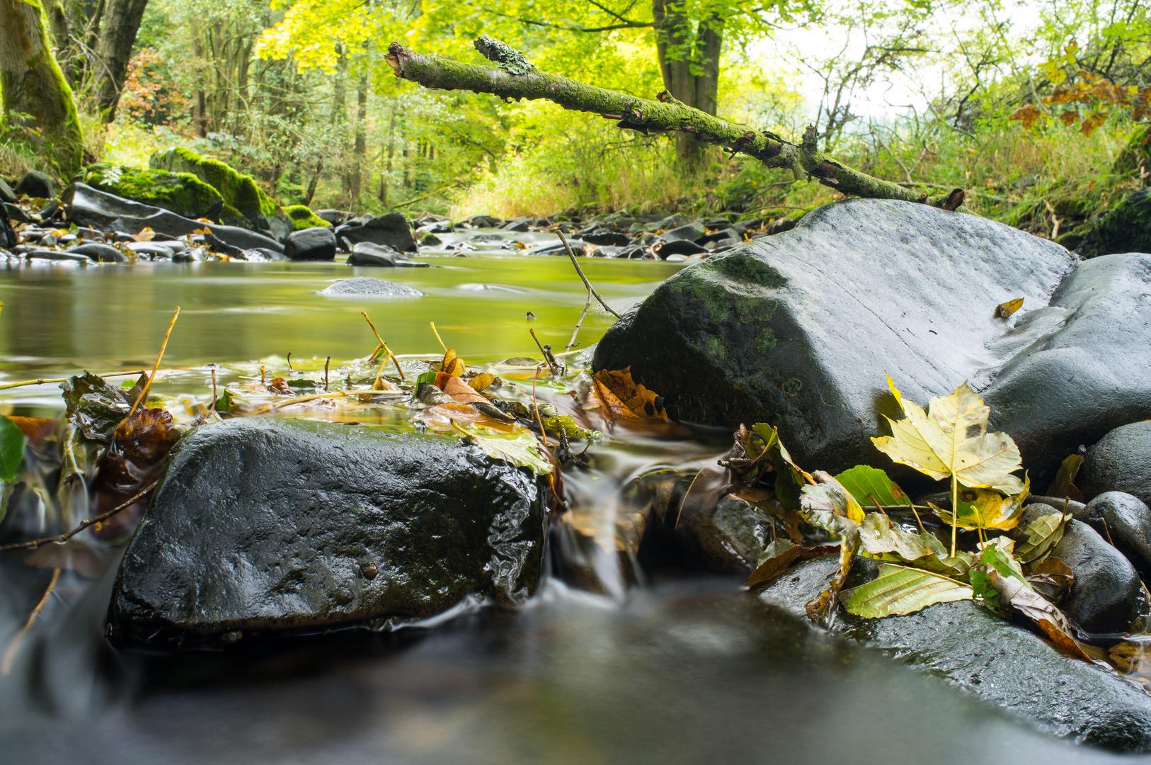 Herbst an der Tettau