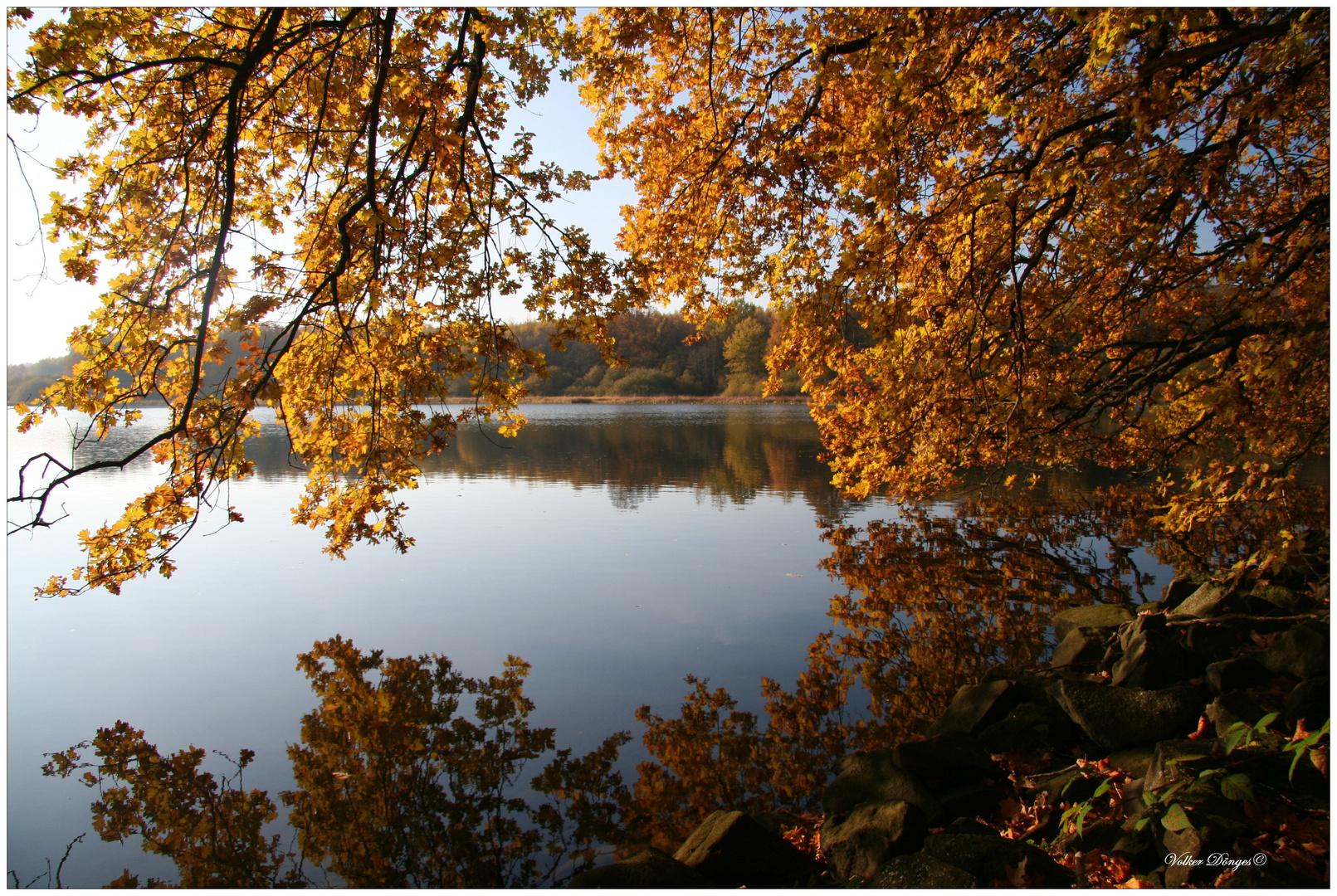 Herbst an der Westerwälder Seenplatte