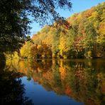 Herbst an der Zschopau