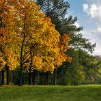 Herbst auf dem Bergfried
