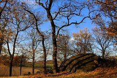 """Herbst auf dem """"Dritten Steinhügel"""""""