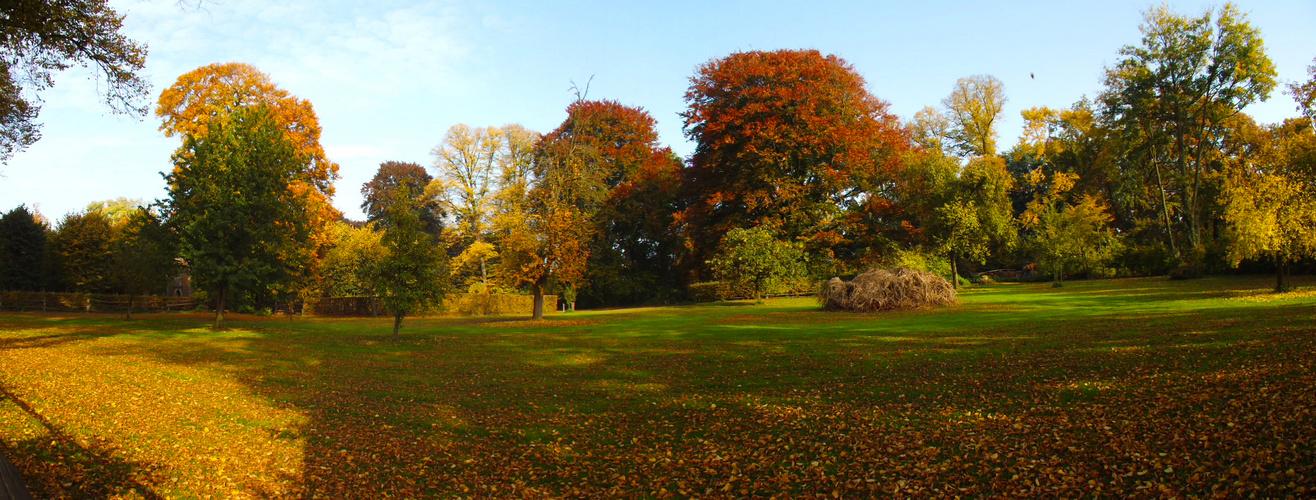 Herbst Auf Dem Furstenberg Foto Bild Jahreszeiten Herbst