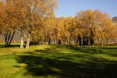 Herbst auf dem Golfplatz Interlaken-Unterseen