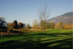 Herbst auf dem Golfplatz Interlaken-Unterseen_1