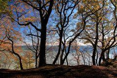 Herbst auf dem Hochuferweg im Jasmunder Nationalpark