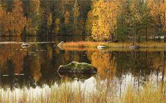 Herbst auf dem Lande