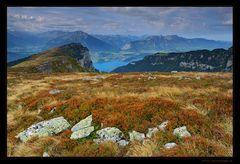 Herbst auf dem Niederhorn
