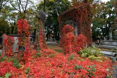 Herbst auf dem Powazki-Friedhof