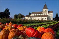 Herbst auf der Insel Reichenau