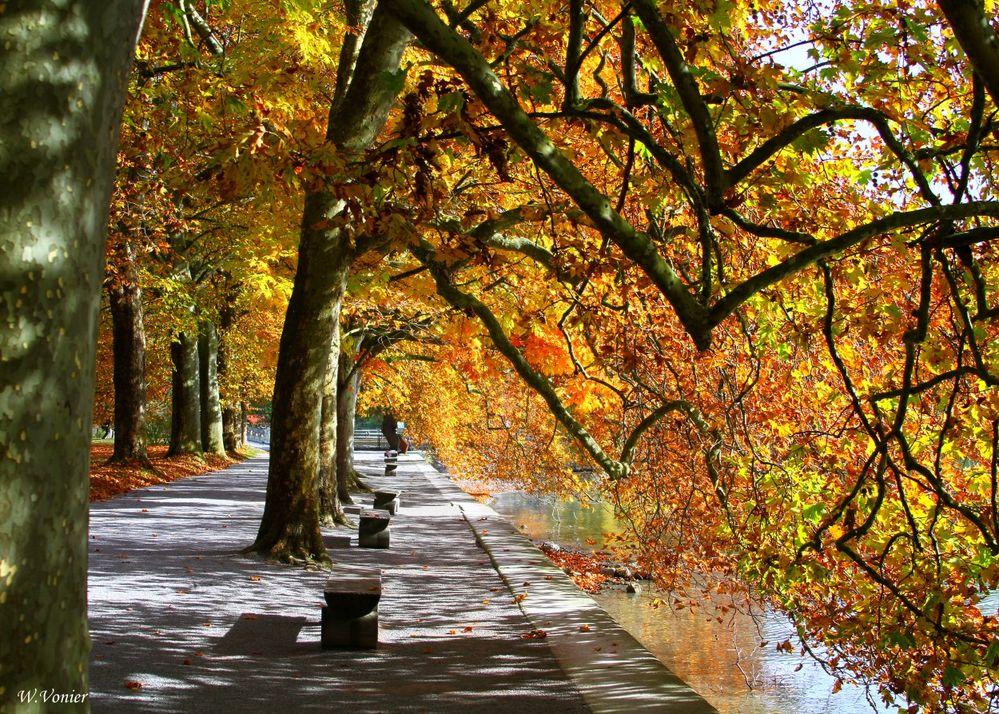 Herbst auf der Mainau