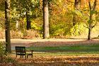 Herbst auf der Pfaueninsel 2
