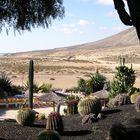 Herbst auf Fuerteventura