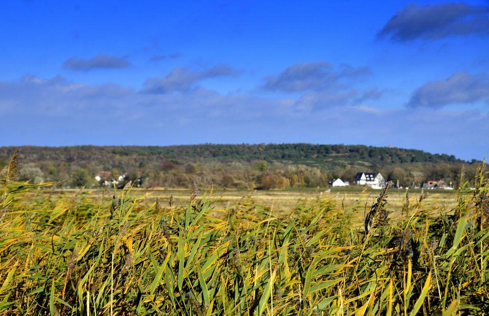 Herbst auf Hiddensee