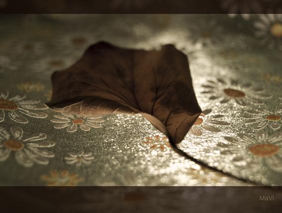 Herbst auf meinem Frühlingstisch