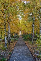Herbst auf Zollverein