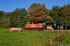 Herbst bei der WLE IV