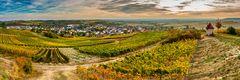 Herbst bei Sulzheim (2)