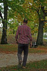 """""""Herbst - Blues Von Pferdchen - Fotografie"""""""