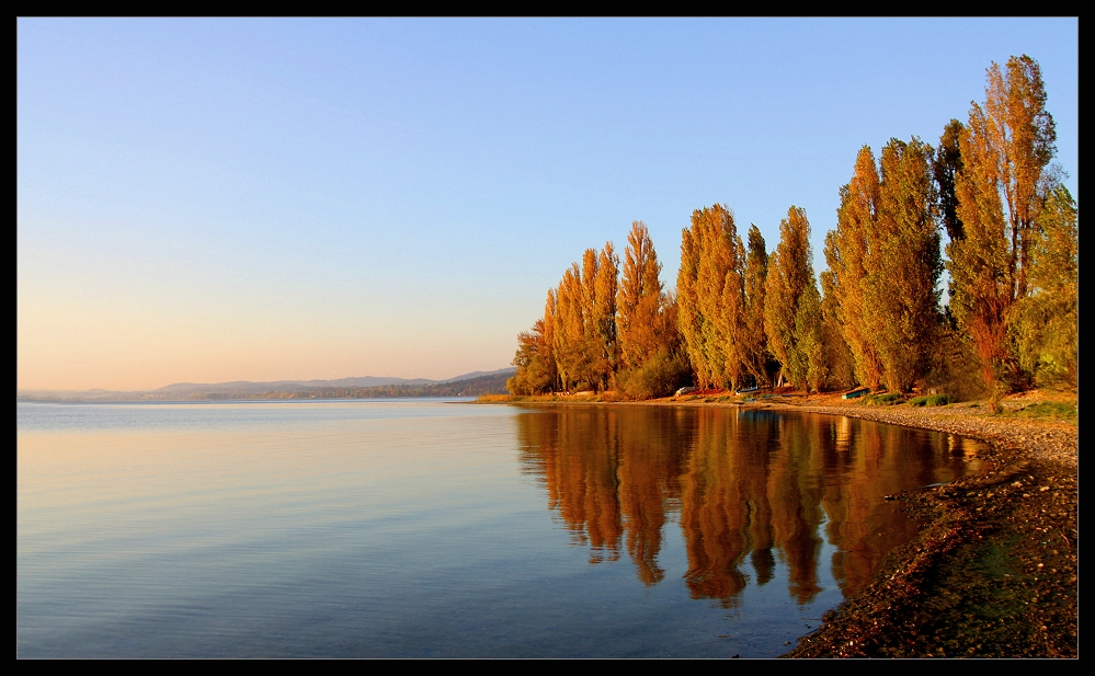 Herbst - Bodensee