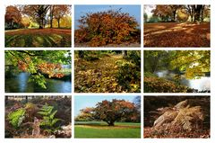 Herbst-Collage 2012 - 2