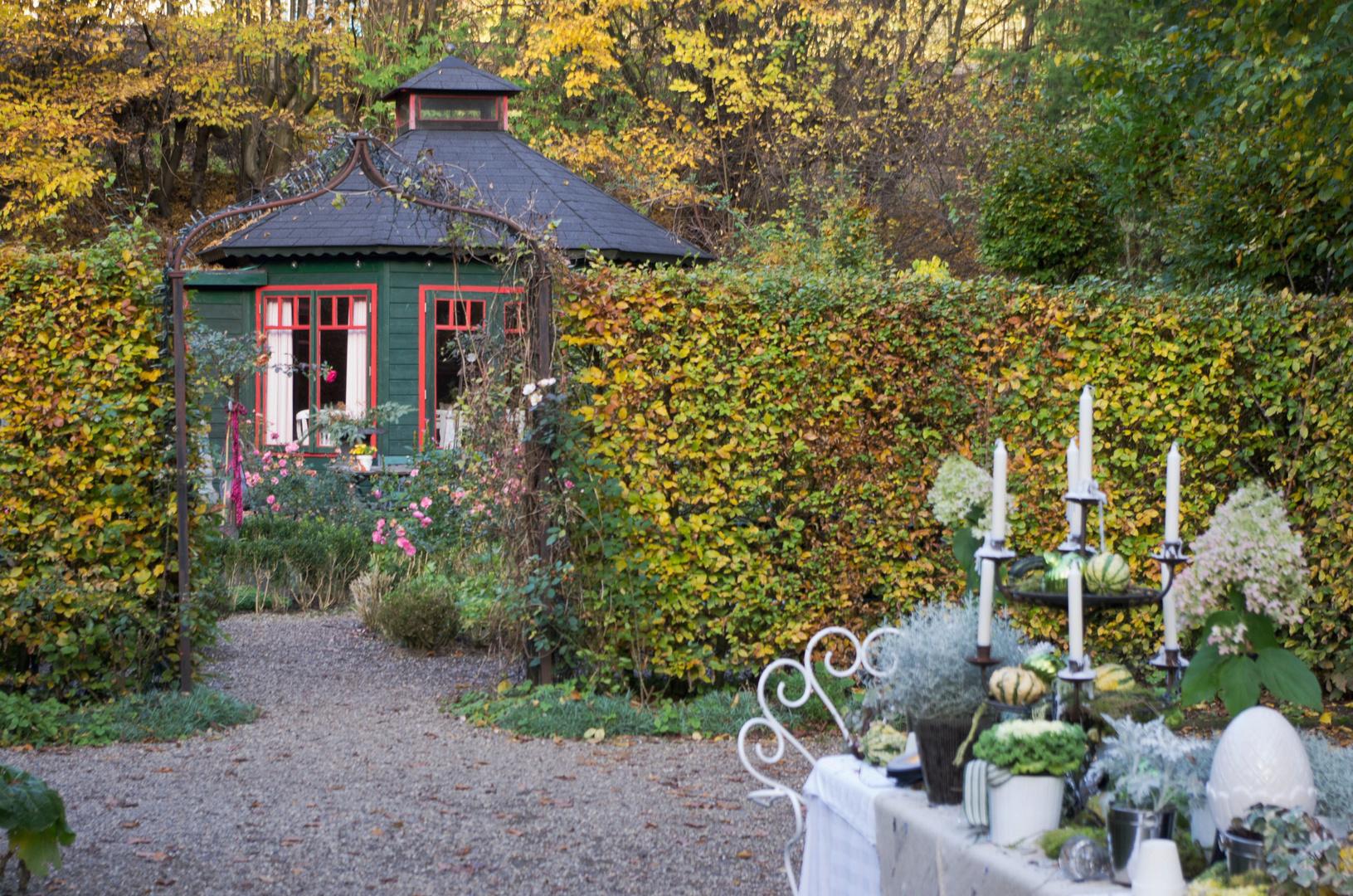 Herbst der garten wissen an der sieg foto bild jahreszeiten herbst sonstiges bilder auf - Herbst garten ...