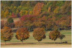 Herbst des Lebens... Déjà-vu...