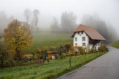 Herbst - die schönste Jahreszeit ....