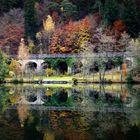 Herbst die Sonne erzeugt die schönsten Farben(Archivebild)