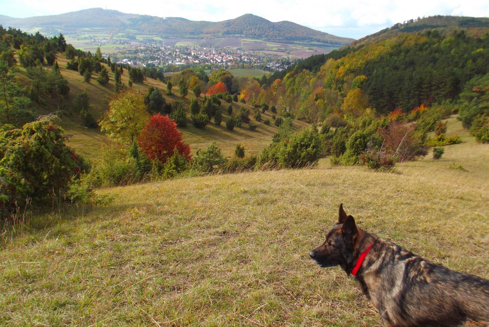Herbst, die Zeit der vielen Farben