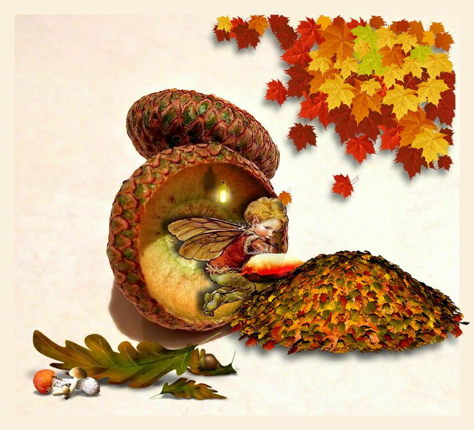 Herbst - Elferich entdeckt!