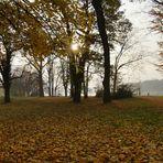 Herbst - Es ist der Liebe milde Zeit.