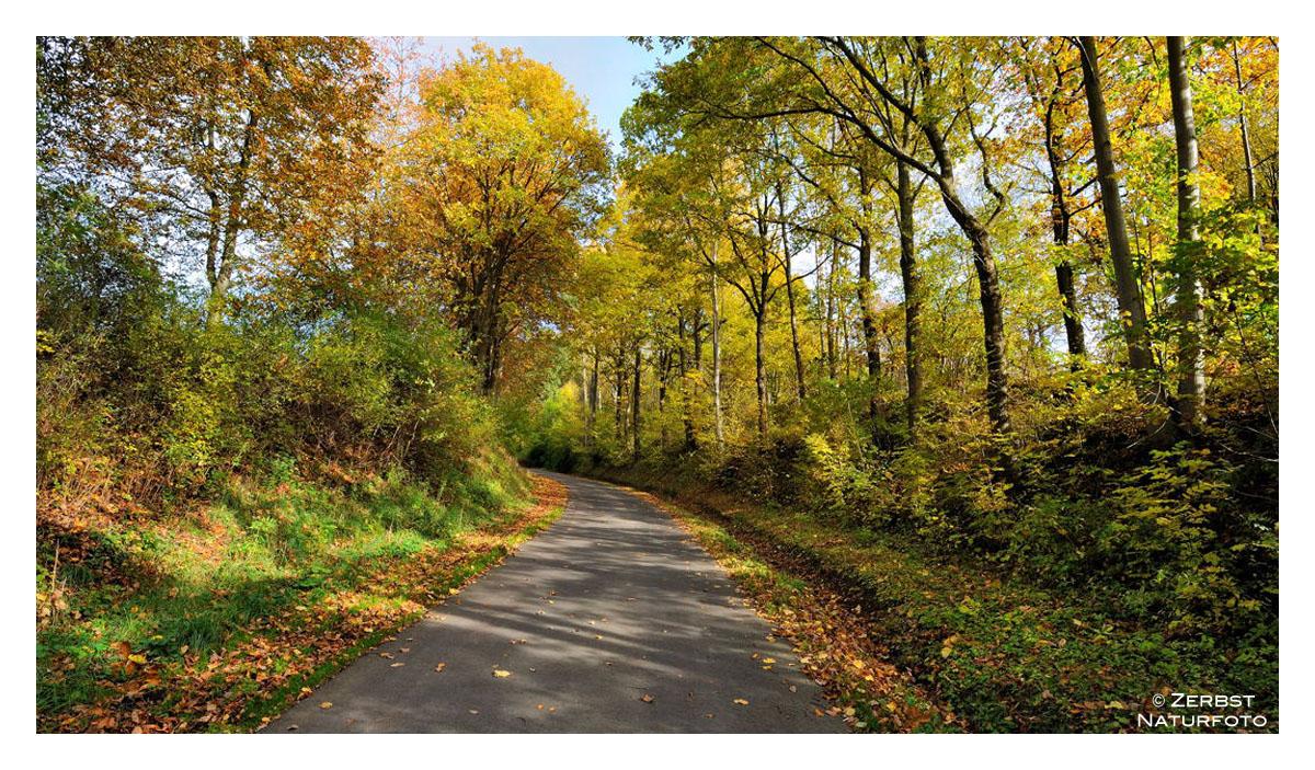 - Herbst-Farben 2 -