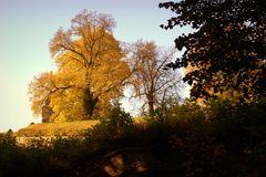 Herbst-Farben-