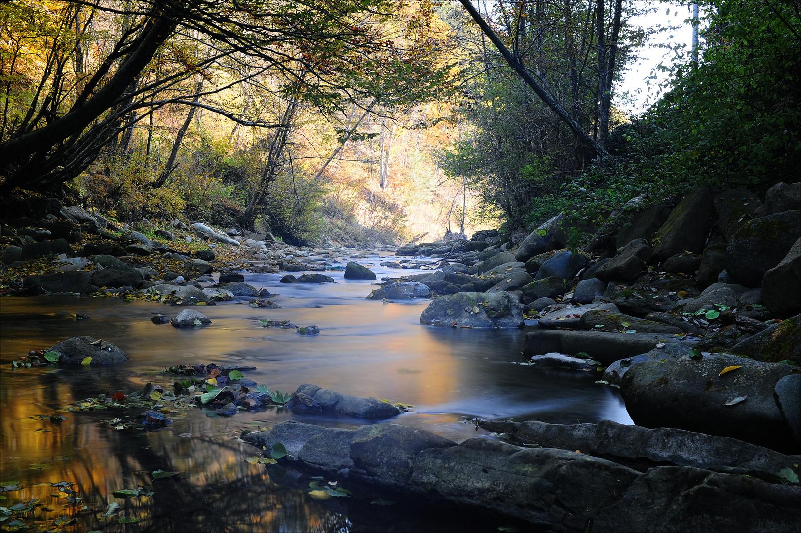Herbst Farben in Rumaenien