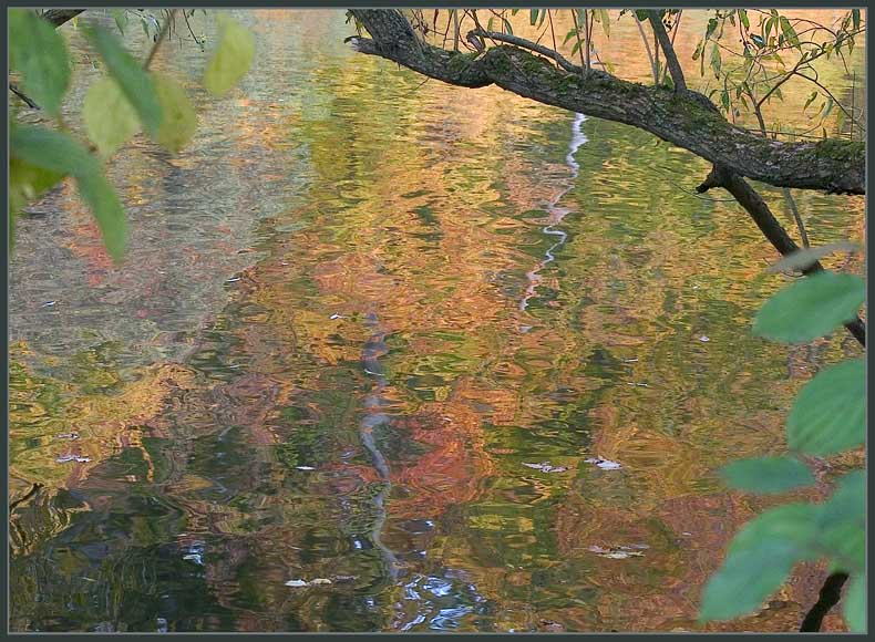 Herbst - Farben - Spiegelungen