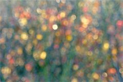 Herbst-Farben-Spiel